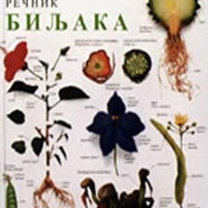 Vizuelni rečnik Biljaka - Enciklopedijsko izdanje DK